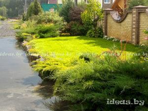 Ландшафтный дизайн фото - газон