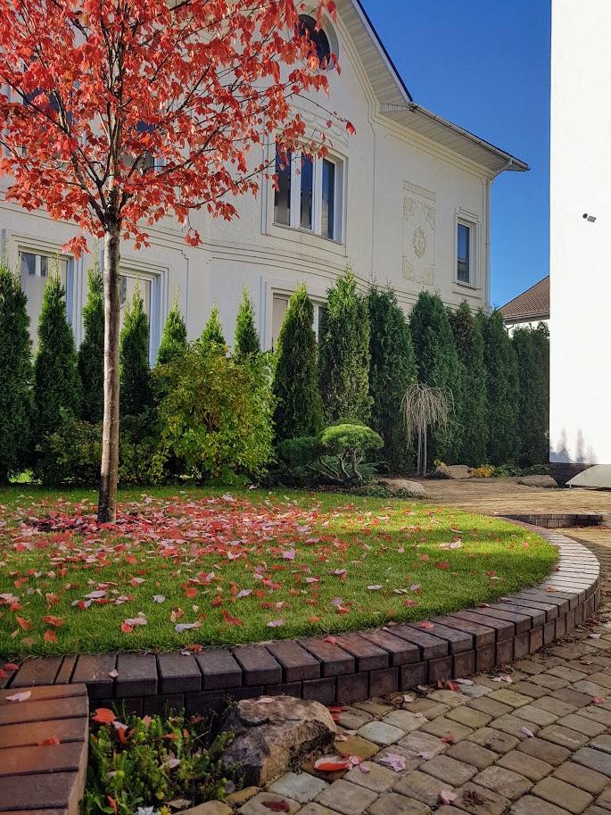Удалить элемент: дизайн двора частного дома фото современных дворов дизайн двора частного дома фото современных дворов